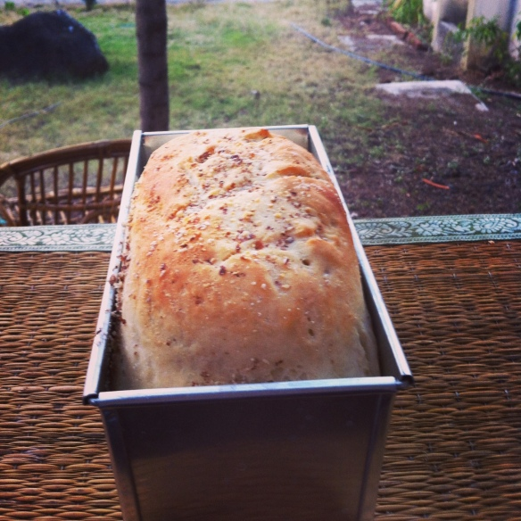 My first loaf of bread